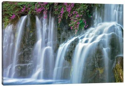 Floral Falls I Canvas Art Print