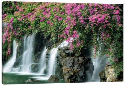 Floral Falls II Canvas Art Print
