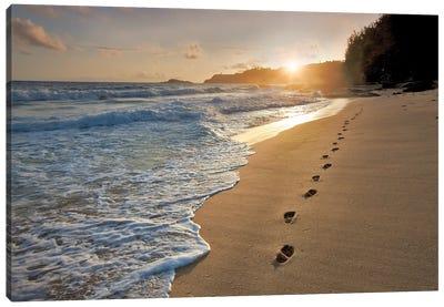 Footprints On The Sand Canvas Art Print