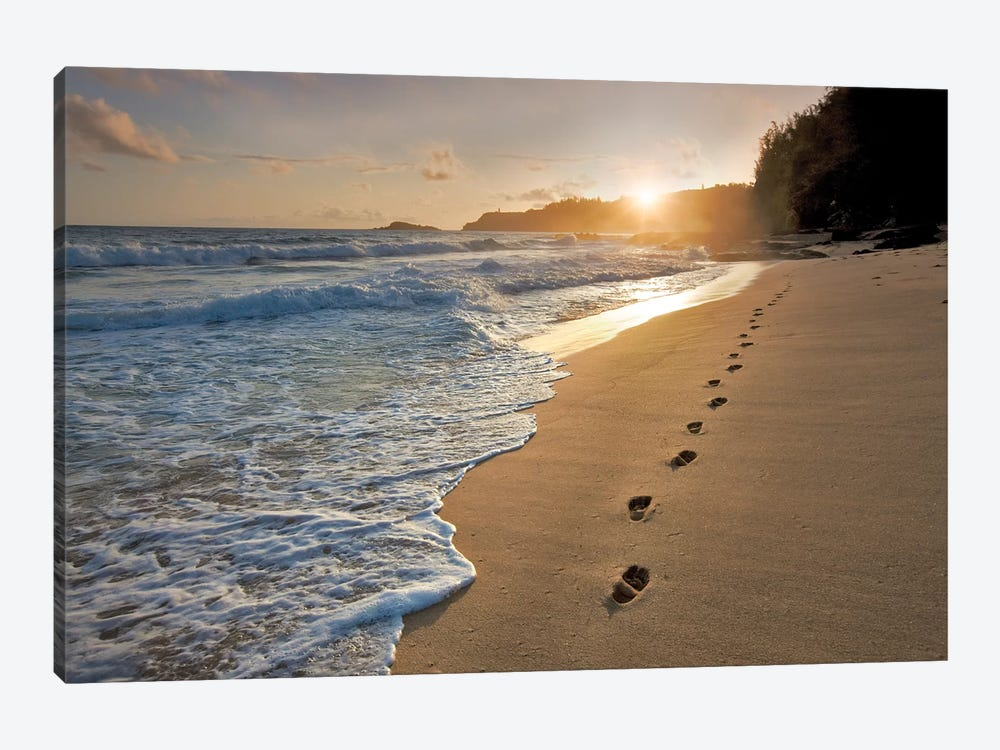 Footprints On The Sand by Dennis Frates 1-piece Canvas Art