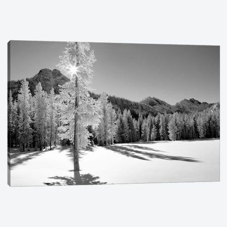 Frozen I Canvas Print #DEN130} by Dennis Frates Canvas Artwork