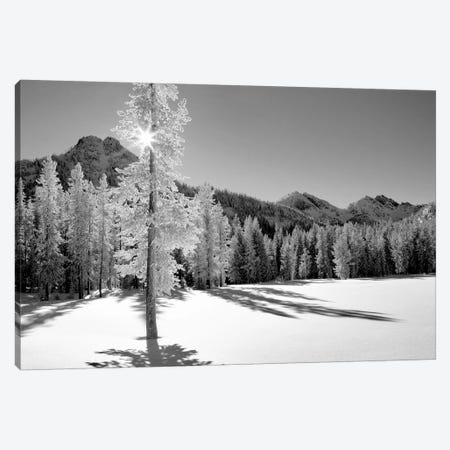 Frozen I Canvas Print #DEN130} by Dennis Frates Canvas Artwork