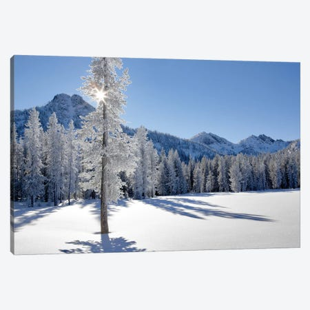 Frozen II Canvas Print #DEN131} by Dennis Frates Canvas Wall Art