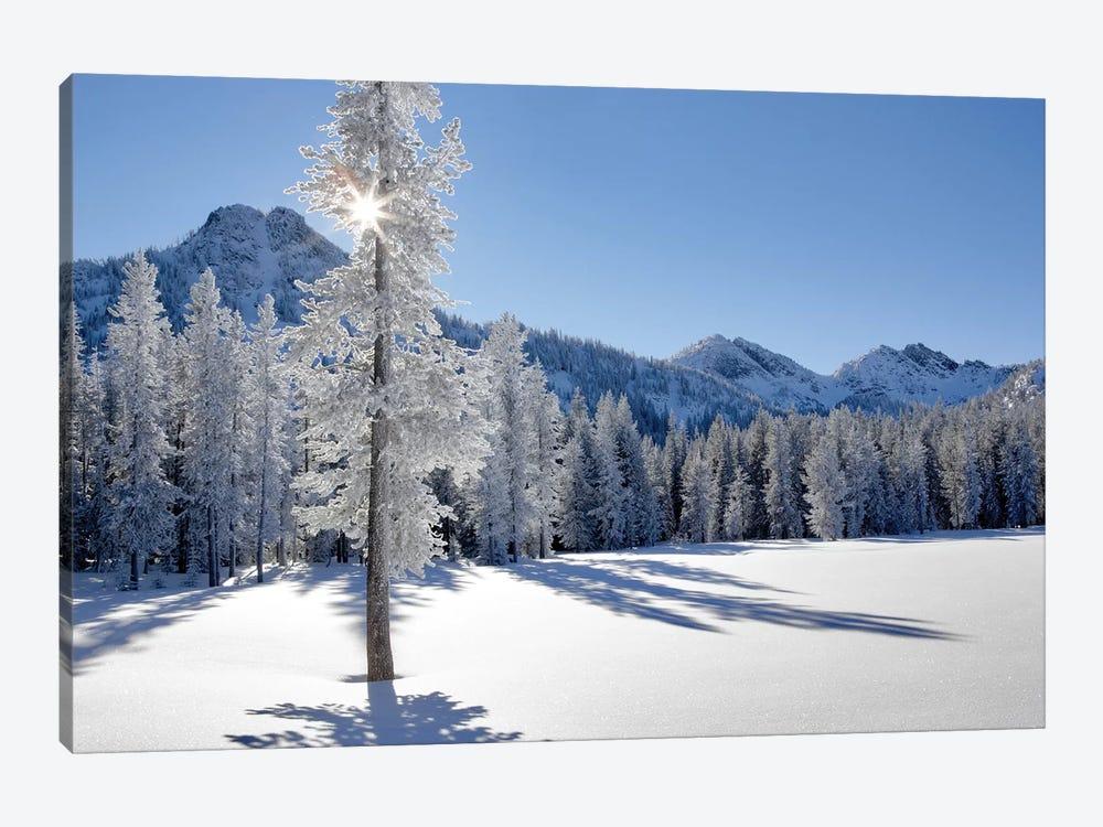Frozen II by Dennis Frates 1-piece Canvas Art Print