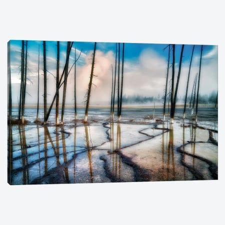 Geyser Patterns Canvas Print #DEN133} by Dennis Frates Canvas Wall Art