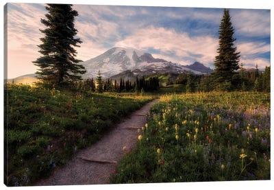 Alpine Path Canvas Art Print