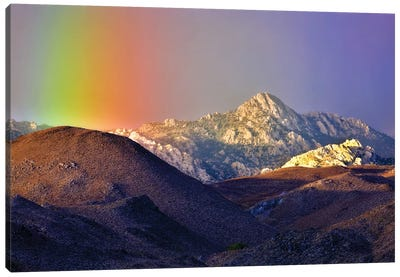 Alpine Rainbow Canvas Art Print