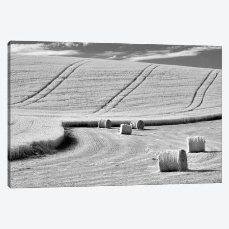 Harvest Canvas Print #DEN150} by Dennis Frates Canvas Artwork