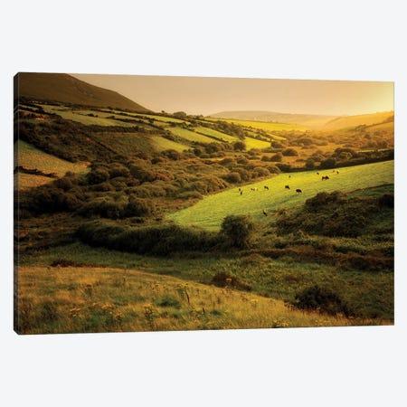 Irish Hillside Canvas Print #DEN161} by Dennis Frates Art Print