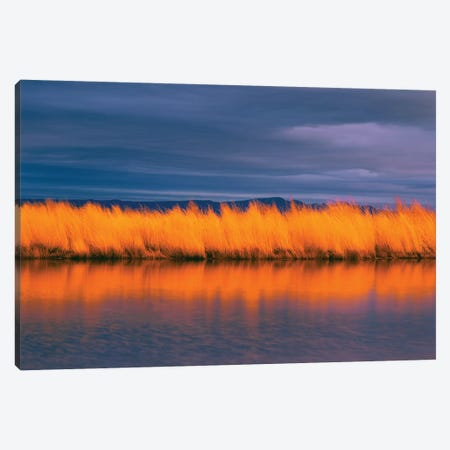 Last Light Canvas Print #DEN173} by Dennis Frates Canvas Artwork