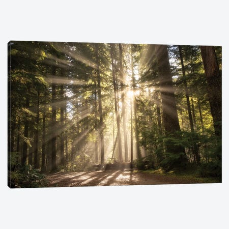 Light Burst Canvas Print #DEN175} by Dennis Frates Art Print