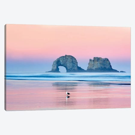 Lone Seagull Canvas Print #DEN182} by Dennis Frates Canvas Print