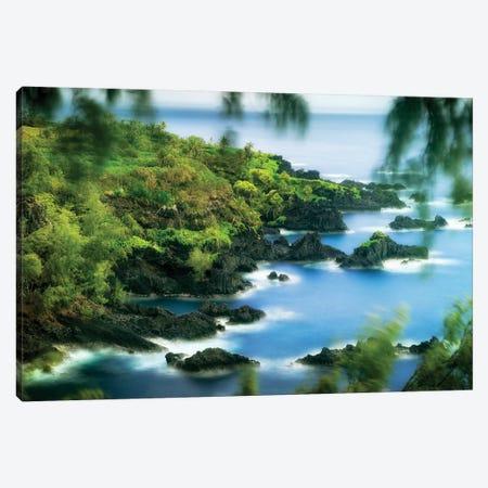 Maui Shoreline I Canvas Print #DEN193} by Dennis Frates Canvas Art
