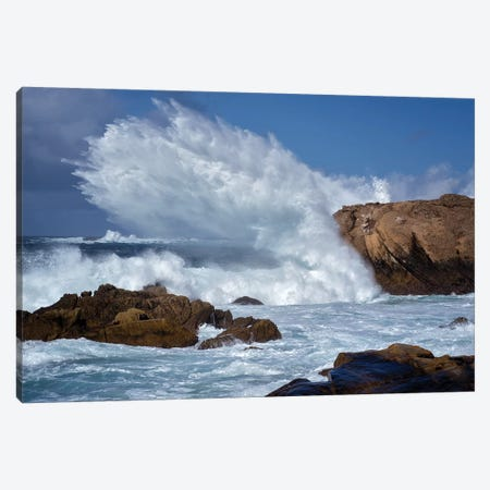Monster Wave Canvas Print #DEN202} by Dennis Frates Canvas Wall Art