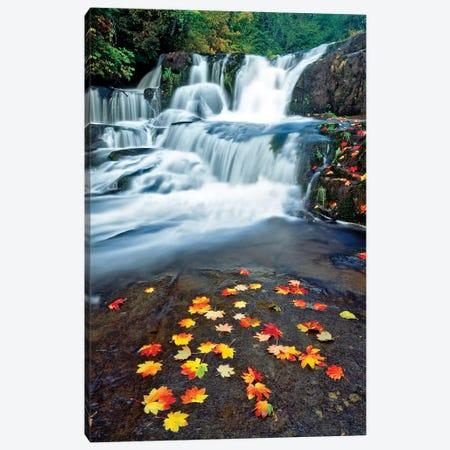Autumn Falls Canvas Print #DEN20} by Dennis Frates Canvas Art Print