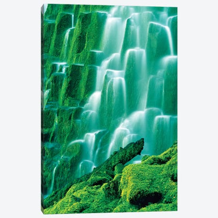 Moss Covered Falls Canvas Print #DEN216} by Dennis Frates Canvas Art