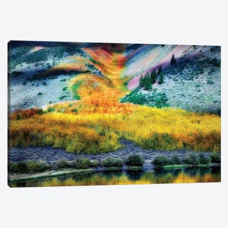 Autumn Flow I Canvas Print #DEN21} by Dennis Frates Canvas Art Print