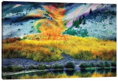 Autumn Flow I Canvas Art Print