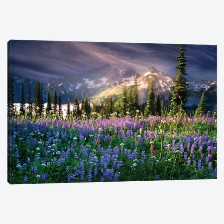 Mountain Wildflowers Canvas Print #DEN221} by Dennis Frates Canvas Wall Art
