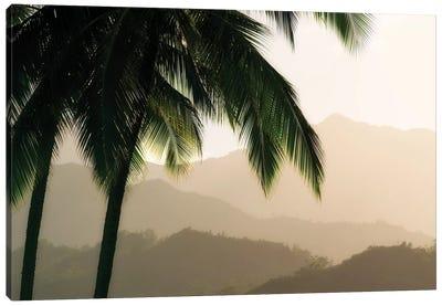 Palm Hills Canvas Art Print