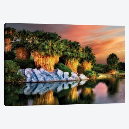 Palm Reflection Canvas Print #DEN241} by Dennis Frates Canvas Art