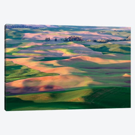 Palouse Spring 3-Piece Canvas #DEN245} by Dennis Frates Art Print
