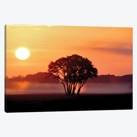 Pasture Sunrise Canvas Print #DEN246} by Dennis Frates Canvas Print