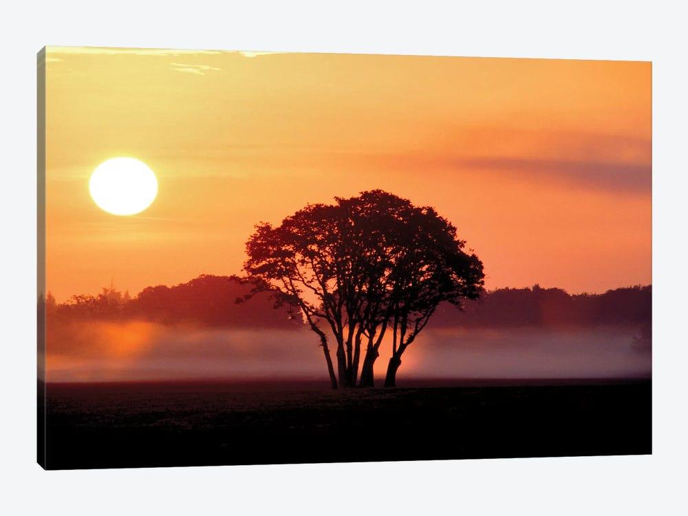 Pasture Sunrise by Dennis Frates 1-piece Canvas Print