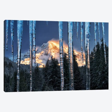 Rainier Ice Canvas Print #DEN267} by Dennis Frates Art Print