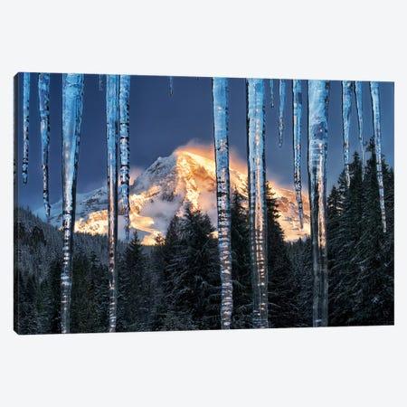 Rainier Ice Canvas Print #DEN267} by Dennis Frates Art Print