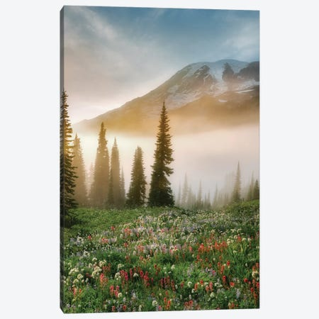 Rainier Wildflowers Canvas Print #DEN270} by Dennis Frates Canvas Print