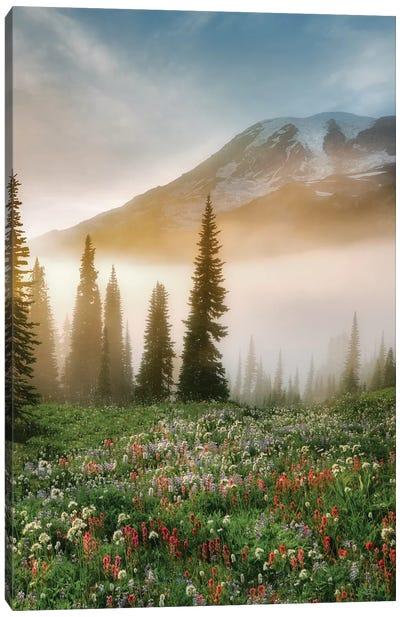 Rainier Wildflowers Canvas Art Print