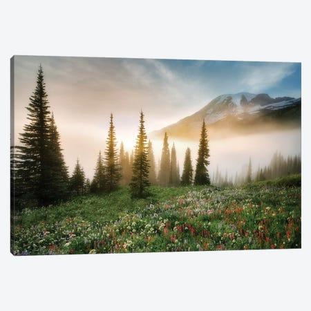 Rainier Wildflowerws Canvas Print #DEN271} by Dennis Frates Art Print