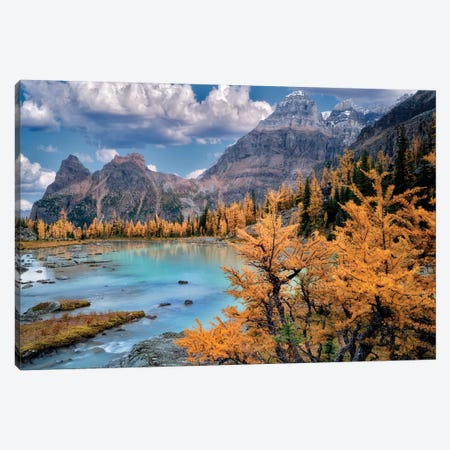 Rocky Mt. Larch 3-Piece Canvas #DEN282} by Dennis Frates Canvas Art