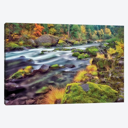 Autumn Stream II Canvas Print #DEN28} by Dennis Frates Art Print