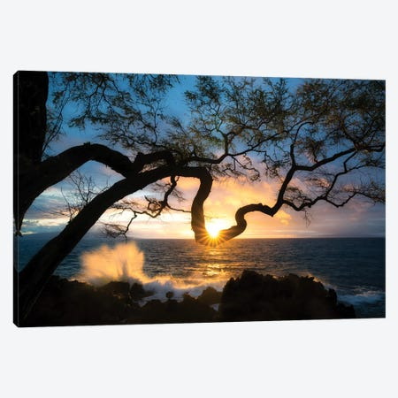 Silhouette Sunset Canvas Print #DEN307} by Dennis Frates Canvas Art