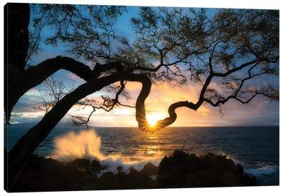 Silhouette Sunset Canvas Art Print