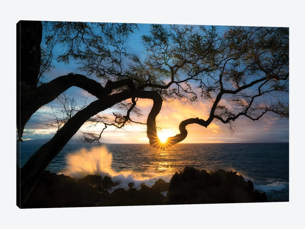 Silhouette Sunset by Dennis Frates 1-piece Canvas Art Print