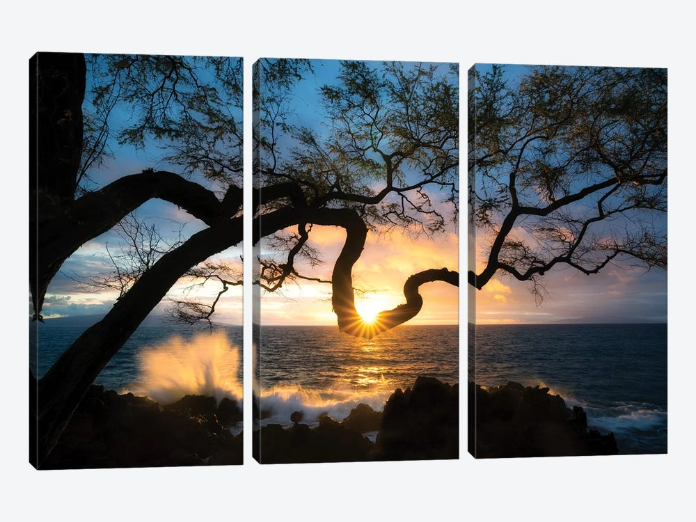 Silhouette Sunset by Dennis Frates 3-piece Canvas Art Print