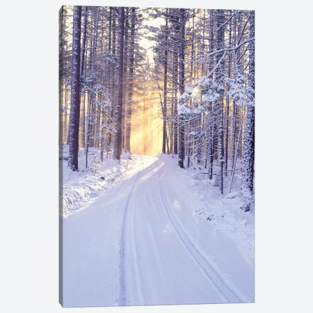 Snowy Sunrise I Canvas Print #DEN313} by Dennis Frates Canvas Wall Art