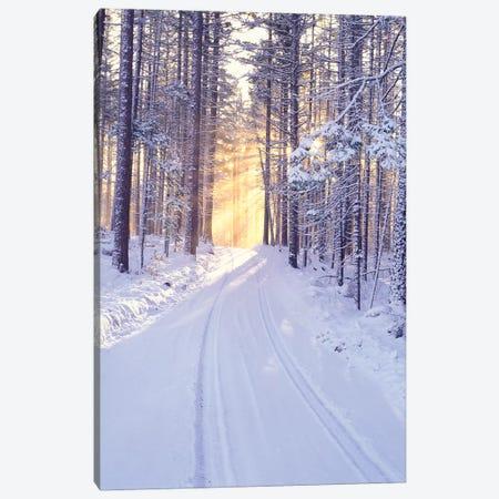 Snowy Sunrise II Canvas Print #DEN314} by Dennis Frates Canvas Print