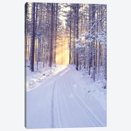 Snowy Sunrise II Canvas Print #DEN314} by Dennis Frates Canvas Print