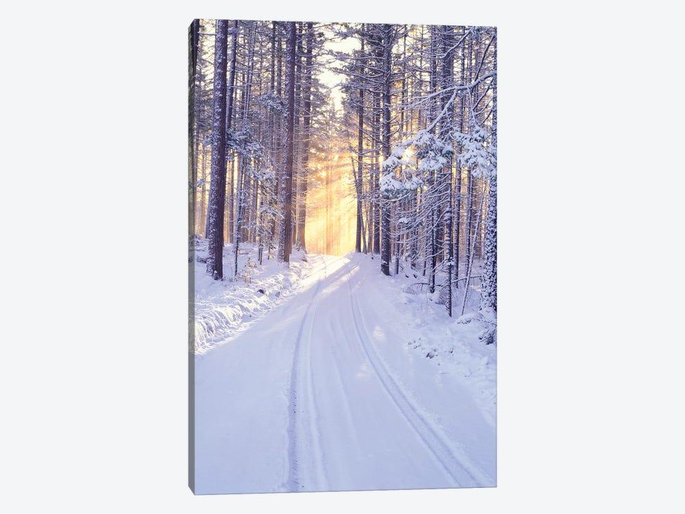Snowy Sunrise II by Dennis Frates 1-piece Art Print