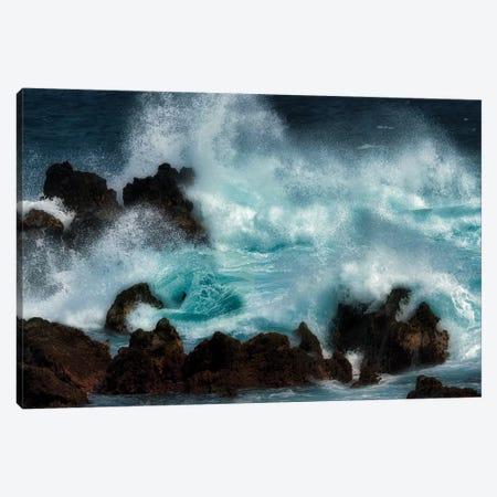 Storm Waves I Canvas Print #DEN328} by Dennis Frates Canvas Art Print