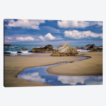 Stream To The Ocean Canvas Print #DEN330} by Dennis Frates Canvas Artwork