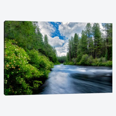 Sweeping Spring River I Canvas Print #DEN346} by Dennis Frates Canvas Art