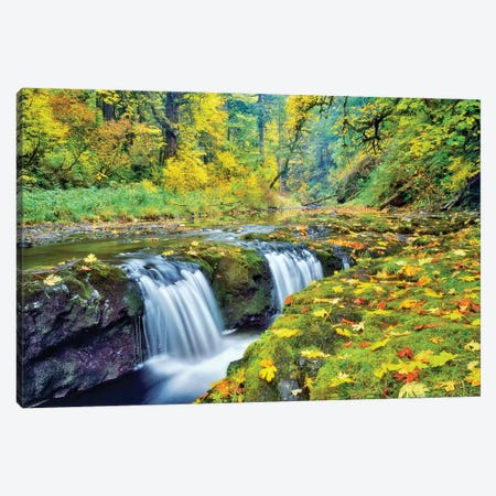Tiny Falls Canvas Print #DEN364} by Dennis Frates Canvas Art