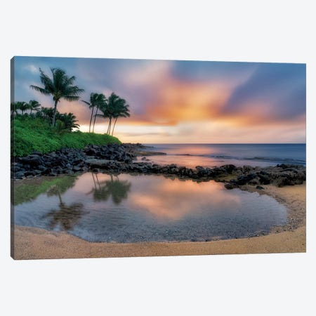 Tiny Tropical Pool Canvas Print #DEN366} by Dennis Frates Canvas Wall Art