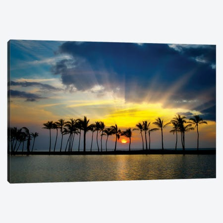 Tropical Pond Sunset Canvas Print #DEN373} by Dennis Frates Canvas Wall Art