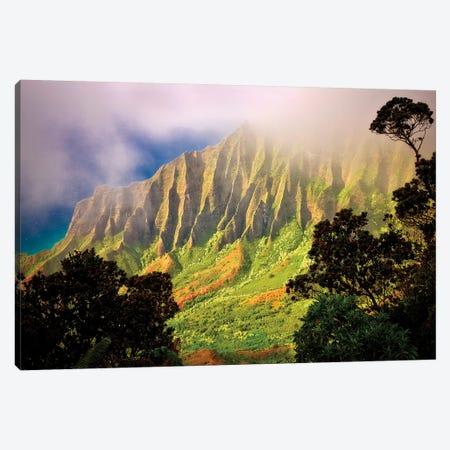 Tropical Sunrise Canvas Print #DEN374} by Dennis Frates Canvas Art Print